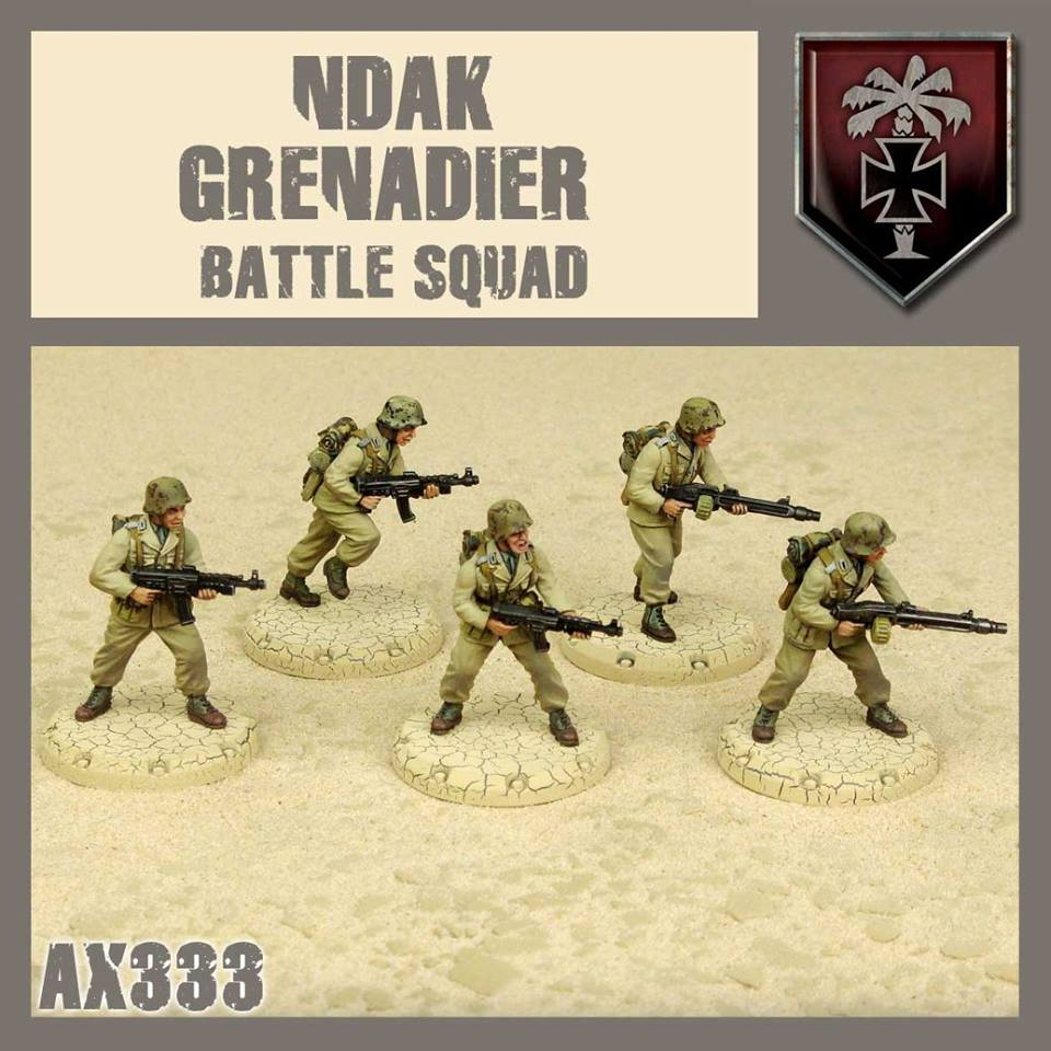 Zdjęcie NDAK Battle Squad